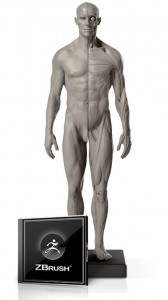Male Flesh/Anatomy 1/6 Scale Fig. 2 and ZBrush Bundle