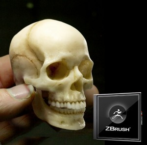 Generic Skull and ZBrush Bundle